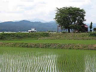 晴れのち曇り時々Ameブロ-田園風景と飯豊山
