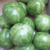 グリーンゼブラトマト(^_^)の画像