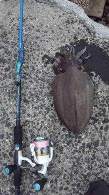 せーぼーの魚釣り通信簿-120623_181823.jpg