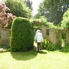 今年も、恒例の、イングリッシュ・ガーデン覗き見♪の記事より