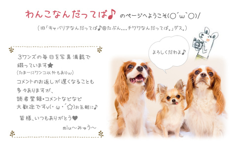 miu~みゅう~のブログ