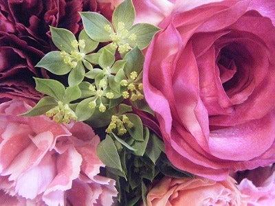 呼吸する様に花を仕入れ、取り合わせる。 花禅-120702