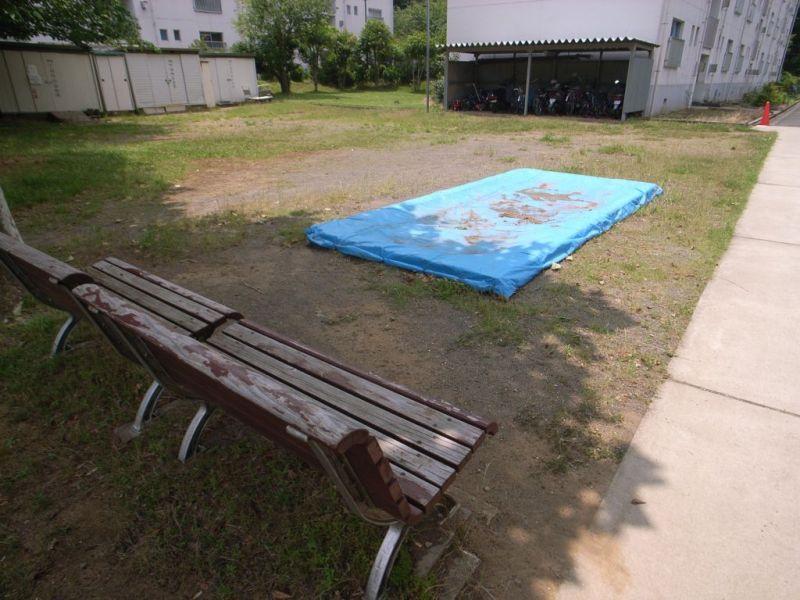 ぽむ吉マニアックス-公園001