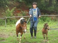 馬を愛する男のブログ Ebosikogen Horse Park-親仔で散歩