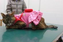 $   新潟市西区の永松動物病院のブログ