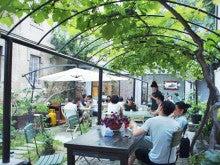 中国大連生活・観光旅行ニュース**-大連 KM Kong Long Mogu 恐竜蘑茄