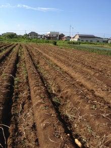 $あつの農業への道-ipodfile.jpg