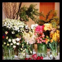 yucari flowers
