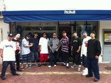 $PitBull 4 Life