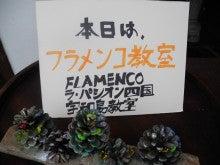 フラメンコ ラパシオンのブログ