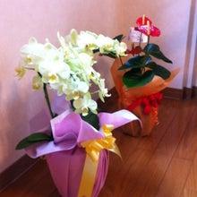 $Etsukoさんのブログ