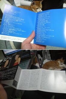 Singer・ 加藤真由 のブログ