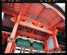 gachan1229のブログ「ツルに魅せられた男の記憶」-5450-008
