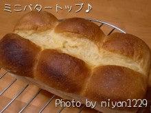 gachan1229のブログ「ツルに魅せられた男の記憶」-ミニバタートップ