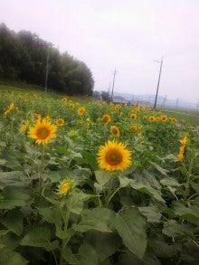 $まきブロ ★石黒農園の毎日★-2012071416220000.jpg