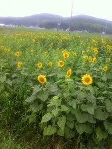 $まきブロ ★石黒農園の毎日★-2012071510290000.jpg