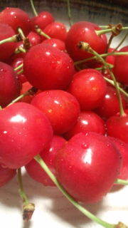赤燈のブログ-20120701225555.jpg