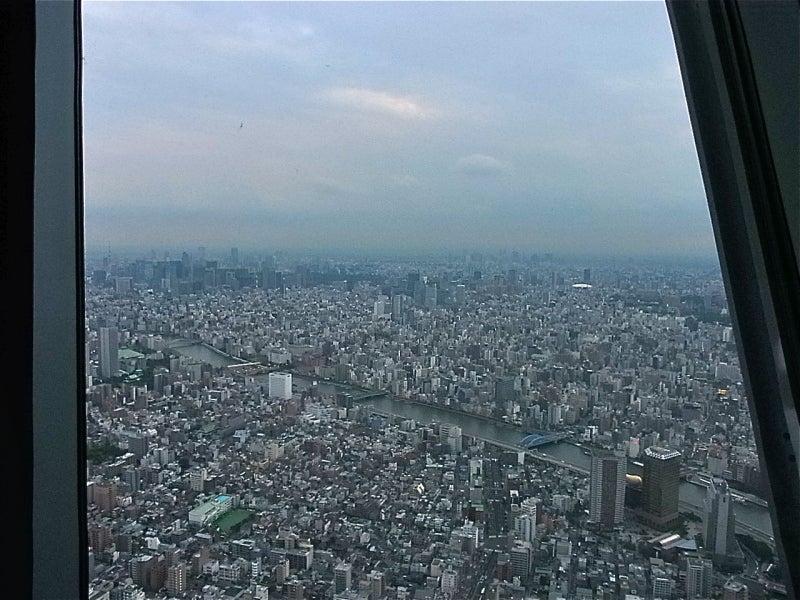 お味噌のそこがミソ☆ chie*のお味噌ステキ探訪紀行-350mの眺め
