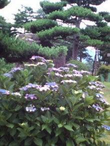 ボディー・フリーク代表           篠塚蘭美以の 「美意識の種&         恵比寿飯場」