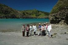 小笠原のエコツアー 小笠原旅行 小笠原観光 小笠原の情報と自然を紹介します-びいなす