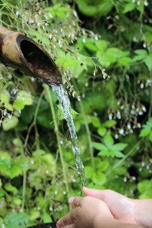 日々 更に駆け引き-湧き水