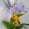 職場の花の画像