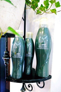 高知県四万十市中村の美容室、ヘアーサロン、パーディションのブログです。 -P1260955.jpg