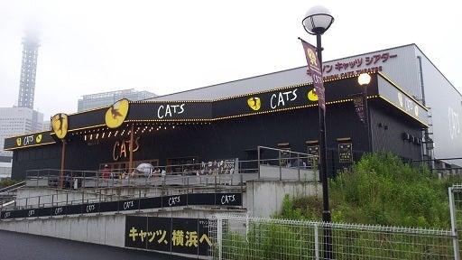横浜ぶらり百景-キャッツシアター1