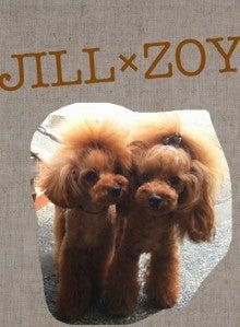 **. JILL×ZOY    わんDAY 2人は双子ちゃん .**                             by トイプードル-__.JPG
