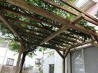 APOA tetsuのブログ