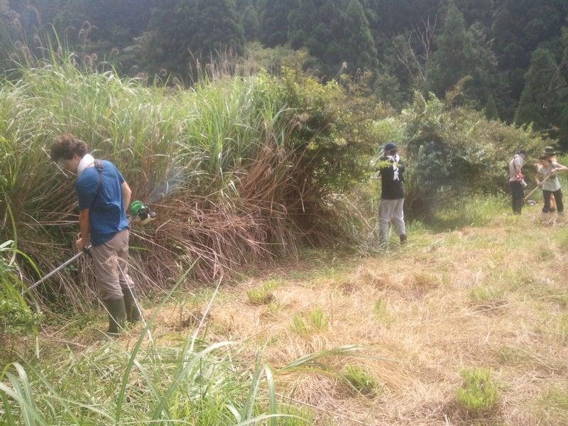 岡山の山村で働く地域おこし協力隊の日々