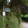 Glastonbury Tor グラストンベリートーにはセントミカエル様が!!の画像