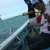 アジ釣りフェスタの画像