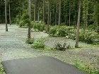軽キャンパーファンに捧ぐ 軽キャン◎得情報-花の森オートキャンプ場テントサイト