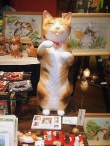 $ワークライフバランス 大田区の女性社長日記-立ち猫