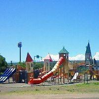 芝よっしの,西洋芝,育成ブログ-海老名運動公園の冒険広場