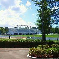 芝よっしの,西洋芝,育成ブログ-海老名運動公園の陸上競技場