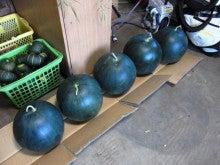 半農半不動産屋のブログ
