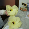 初めての花オクラの画像