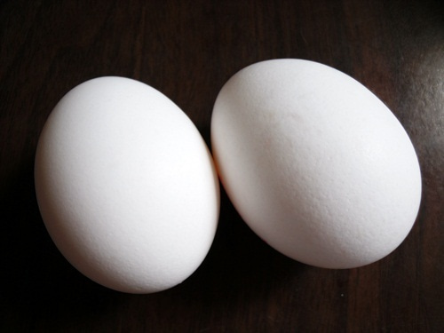 penのフランス語日記 Ameba出張所-卵