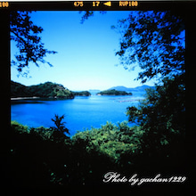 gachan1229のブログ「ツルに魅せられた男の記憶」-ハナグリ