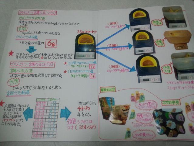 夏休み 自由研究 | 小浜市美容室 HAIR DESIGN ECRUのブログ