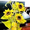 †Flower display†の画像