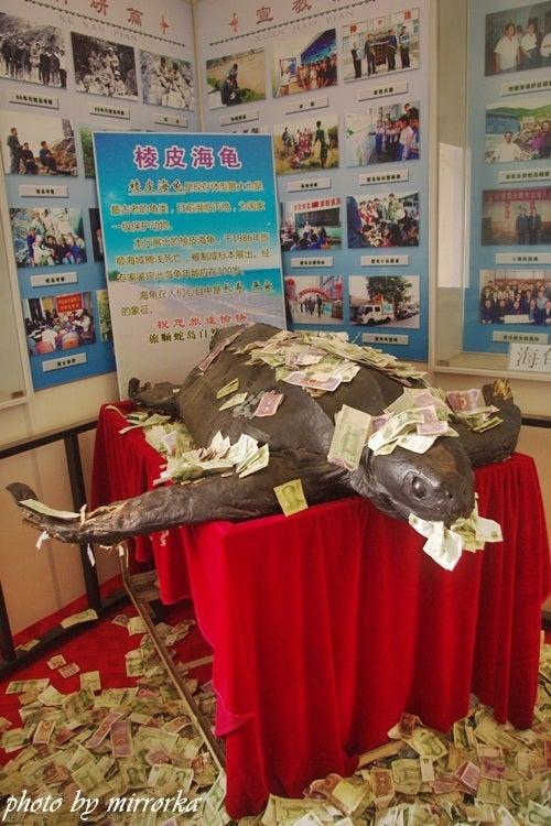 中国大連生活・観光旅行ニュース**-旅順蛇島老鉄山自然博物館