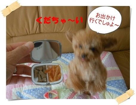 プードルのキラキラおやつケース☆ミ | ティラ&プティ☆ ...