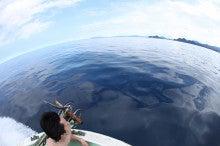 名古屋市三重近郊のダイビングショップ!スタッフの気ままな海ブログ
