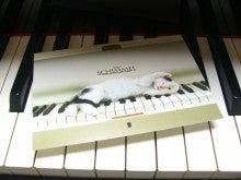 ネコちゃんとピアノ