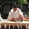 日本を遡る ~真魚箸~の画像