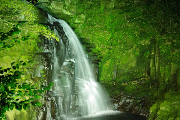 2012赤目四十八滝