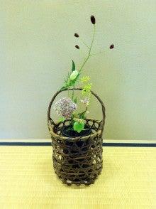 Blog 壷中日月長-20120824茶花